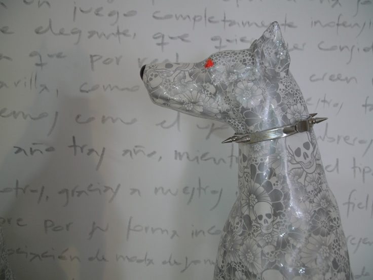 letters and dog