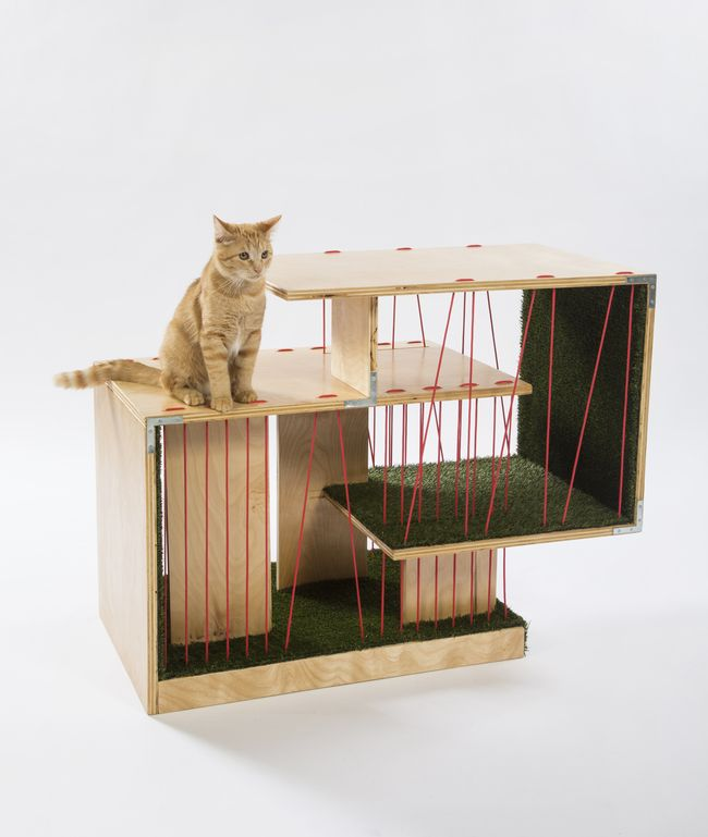 "RNL Design's shelter, photo credit Meghan Bob Photography. From the Archinect post, ""LA architects design shelters for homeless cats – with adorable (and charitable) results"""