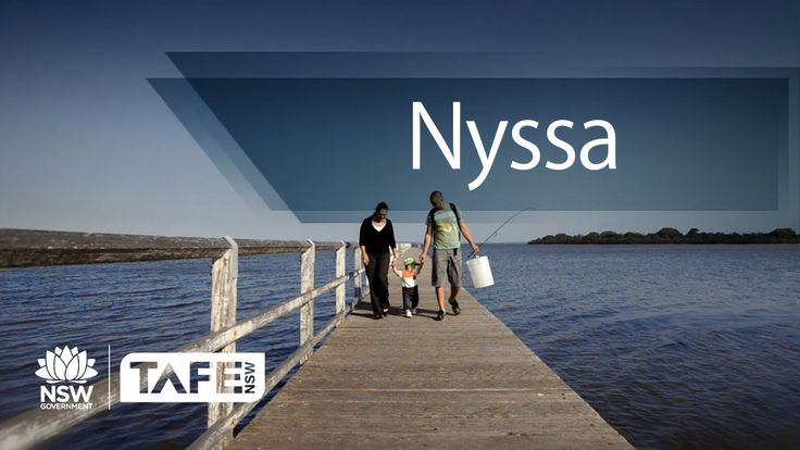 After finishing Uni, Nyssa went back to TAFE Illawarra to get the skills she needed to succeed in business.