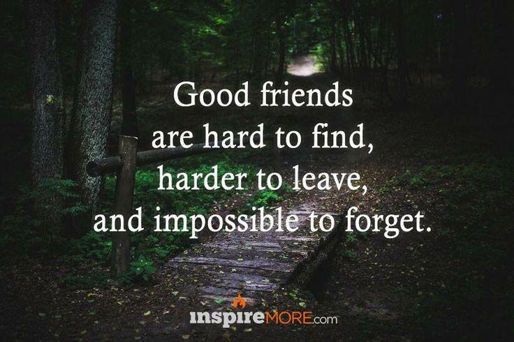 True‼️