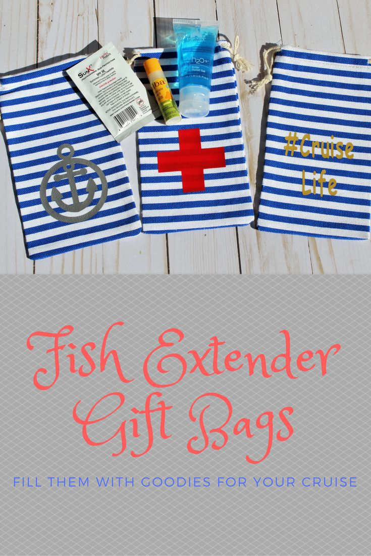 Disney Cruise Fish Extender Gift, FE Gift, Sunglass Bag Pouch, Hangover Kit Bag, Cruise Gift, Blue Stripe Bag, Birthday Party Favor Bag