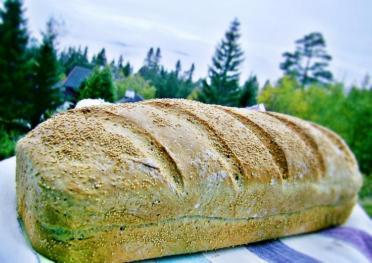 Amaranth seed spelt bread