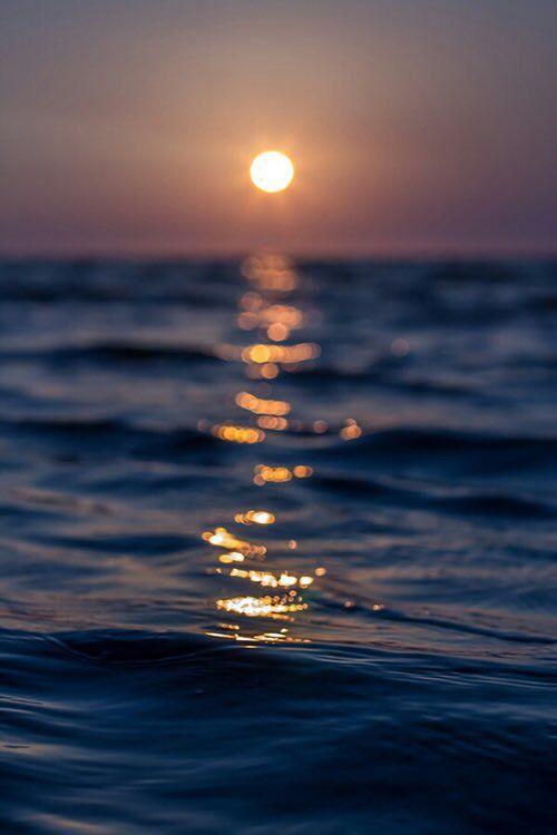 Imagen de sun, sunset, and sea