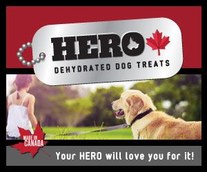 HeroDogTreats™ Features: •100% Canadian •From CFIA inspected facilities •Single ingredient dehydrated treat  •No preservatives  HeroDogTreats™ Benefits: •Packed with glucosamine and chondroitin great for joint health •Dehydrated to preserve full rich flavour  •Excellent for any size dog, just break off a bite size piece and serve •Excellent crunchy training treat