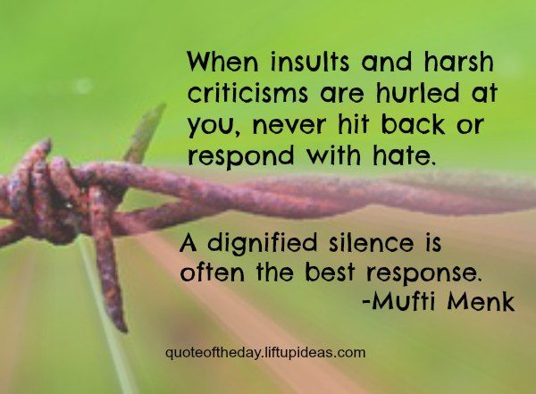insults-criticisms-hurled-never-hit-back-respond-hate-dignified-silence-best-response-mufti-menk