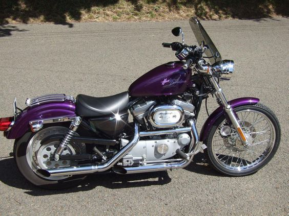 Purple Harley Davidson Sportster For Sale
