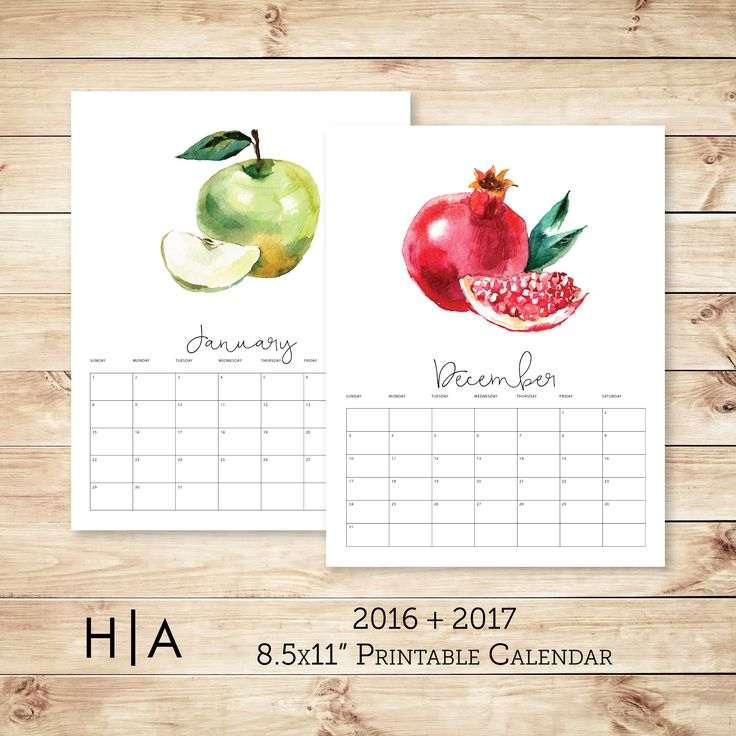 2016 + 2017 Watercolor fruit calendar is the perfect addition to any kitchen…