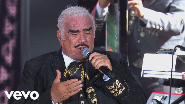 Vicente Fernández - Nos Estorbó la Ropa