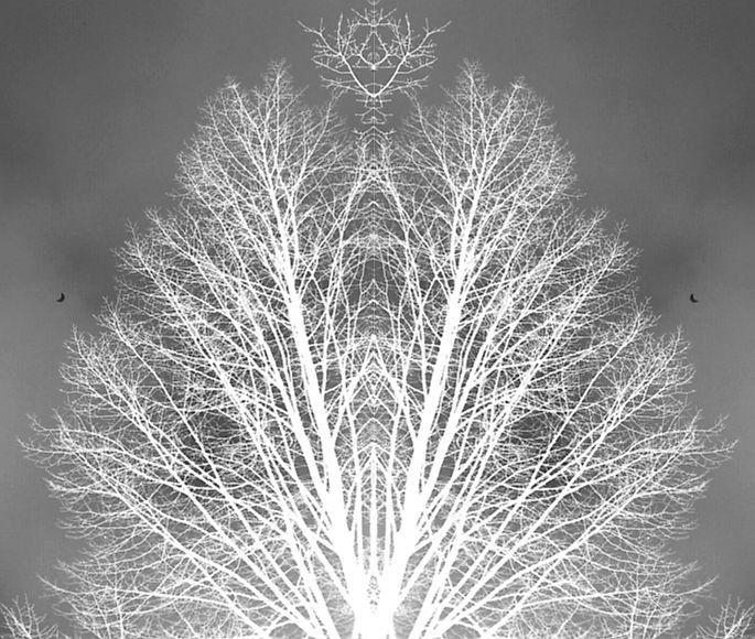 KunSTrich - Mondfinsternis 2015 von                      ღஐƸ̵̡Ӝ̵̨̄Ʒஐღ        *DAKETO*         ღஐƸ̵̡Ӝ̵̨̄Ʒஐღ auf DaWanda.com