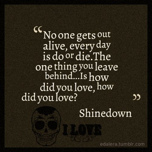 """No one gets out alive. Every day is do or die. The one thing you leave behind is how did you love. How did you love?"" - Shinedown, How Did You Love"