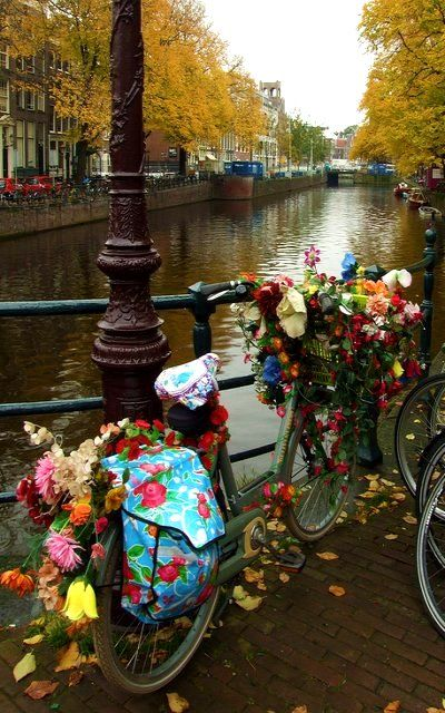 Holland - decorated bicycle in Amsterdam.. (by Agnieszka Piatkowska on Flickr)