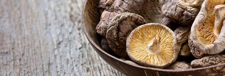 Shiitake: come si cucina uno dei funghi più famosi al mondo