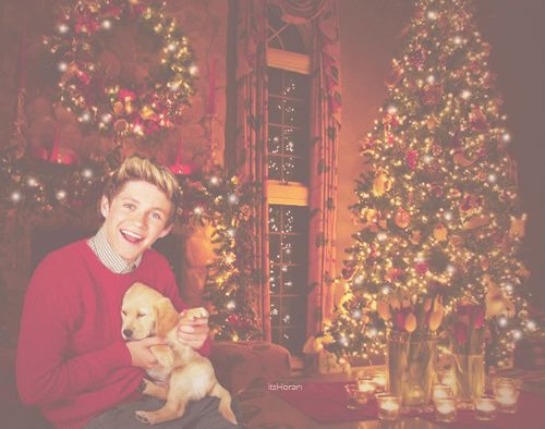 Oh my goodness Christmas present?! Imagine walking down stairs and seeing Nial with a puppy <3