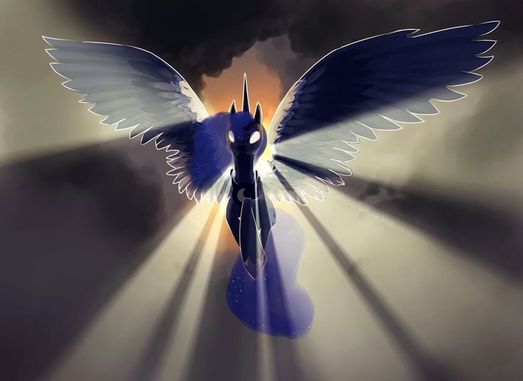 Luna                                                                                                                                                                                 More