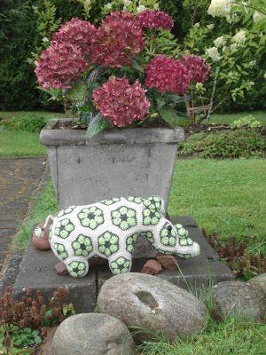 TAIKSI: Sarvikuono, afrikkalaisista kukista