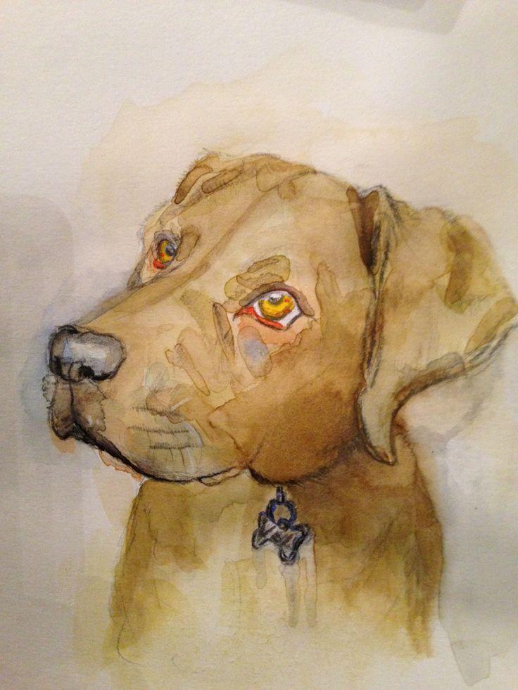 Frankie Puppy - Watercolour