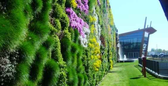 Did you know that the biggest #vertical #garden in the World is here in Italy?  Have a Green Day!