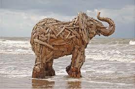 driftwood - Google Search