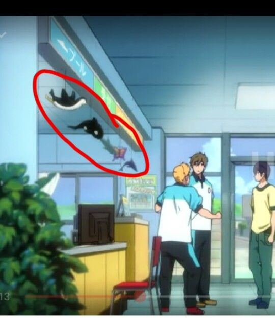 OMG can't believe I didn't notice this before. The animal hanging above the counter are each of the boys' animal representitive from the show. Haru: dolphin ( in he back of the row) Rei: butterfly ( second to last on the row) Rin: shark(in the middle/third) Makoto: orca (second in the row) and Nagisa: penguin ( first in the row)