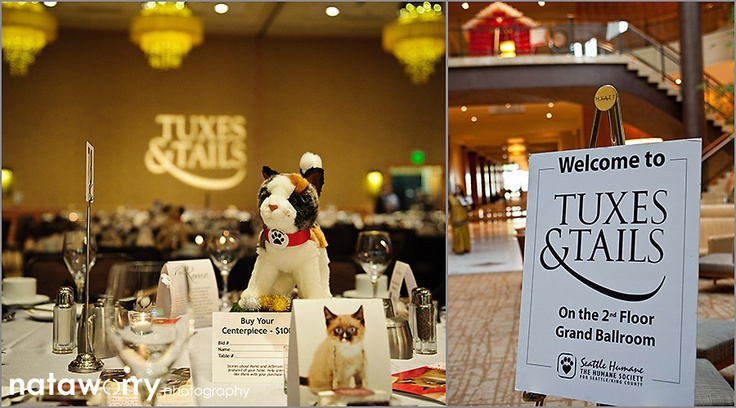 Seattle Humane Society Tuxes and Tails Bellevue Hyatt