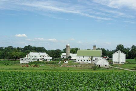 ferme amish Pennsylvania comté de Lancaster