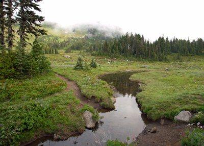 Spray Park — Washington Trails Association