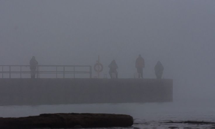 https://flic.kr/p/QdYQSz | Fishing in the fog | A foggy February day and a good day to spend trying your luck on some fisking.