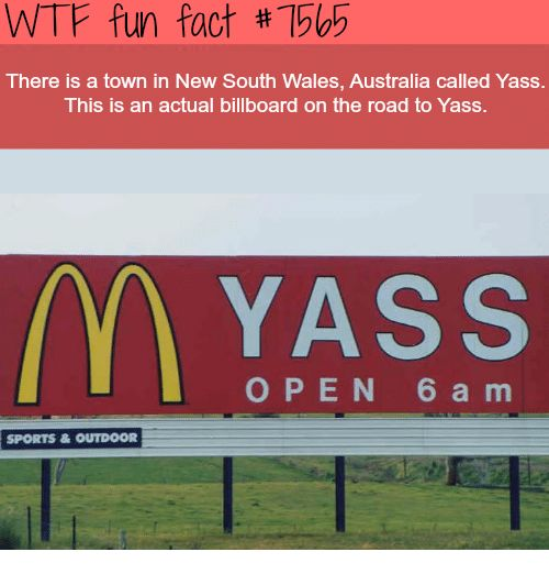 Billboard, Sports, and Wtf: WTF fun fact #1505 There is a town in New South Wales, Australia called Yass. This is an actual billboard on the road to Yass. MYASS OPEN 6 a m SPORTS&OUTDOOR