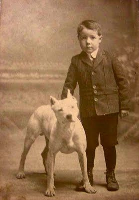 "In the 1920s, pit bulls were referred to as ""nursemaid dogs"" because of how well they behaved with children!"