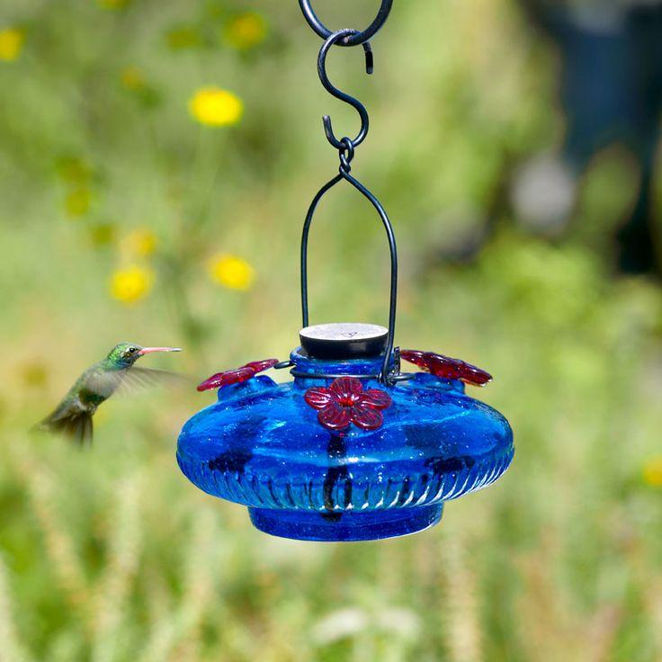 Park Art My WordPress Blog_Hummingbird Feeder Replacement Red Flowers