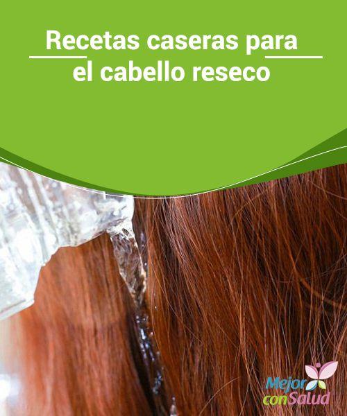 Mas de 1000 ideas sobre cabello seco en pinterest pelo for La mejor receta casera para hidratar el pelo seco