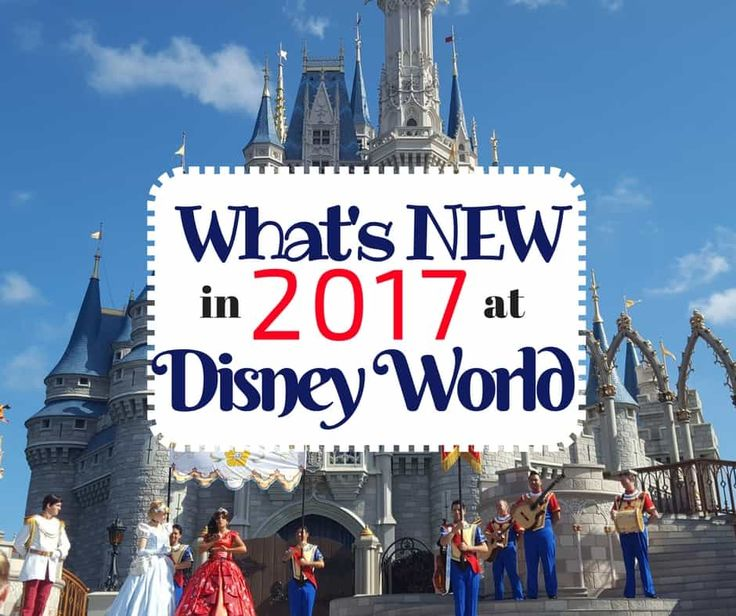 While not all of the parks improvements and additions will be completed in 2017, there are some things that will be new for Walt Disney World in 2017.
