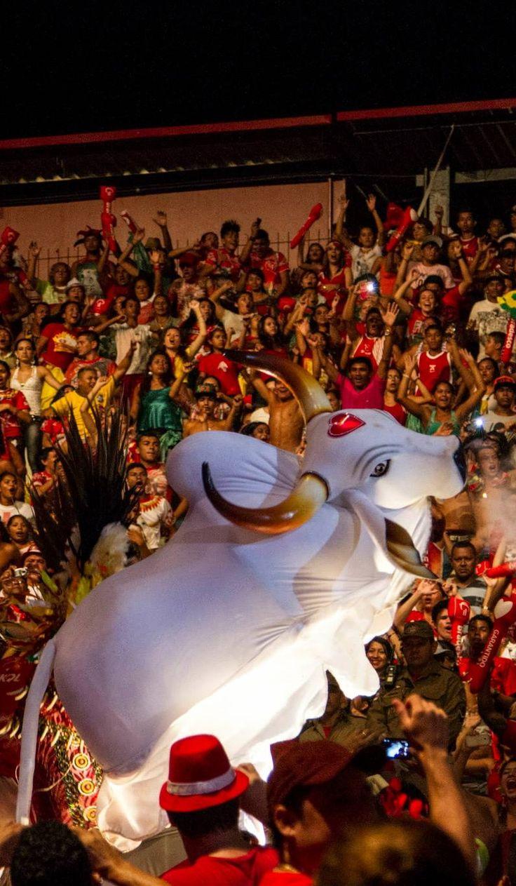 Boi Bumbá - Festival Folclórico de Parintins, Amazonas - Boi Garantido