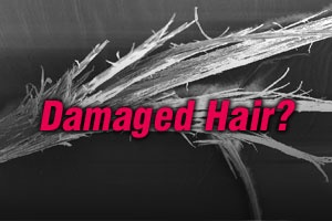 Damaged Hair? Try SPA Enzymetherapy!    Capelli Danneggiati? Prova SPA Enzymetherapy!