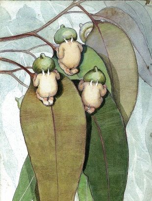 Gum Nut Babies - illustration by May Gibbs
