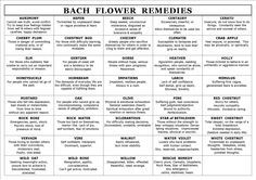 Bach Flower Remedies....Great reference!!!