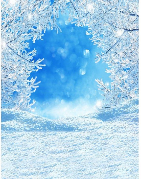 Winter Wonderland Themed Scene Blue Sky Ice Tree Woods