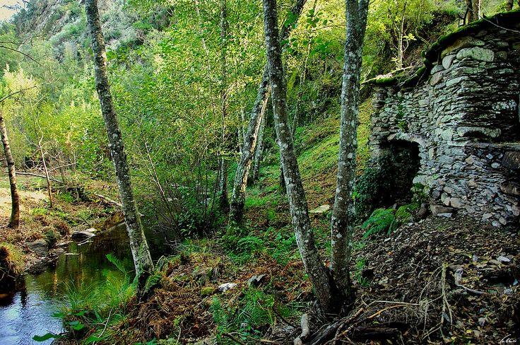 No concelho de Chaves existe uma fortificação envolta em mistério e cujas origens ninguém consegue explicar. Falamos do misterioso castelo do Mau Vizinho.