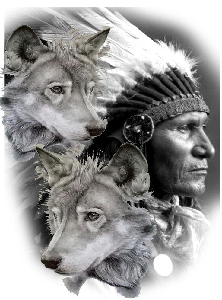 Морда волка фото красивое