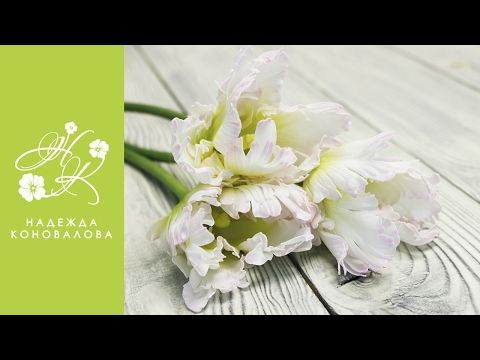 Попугайный тюльпан из шелкового фоамирана - YouTube