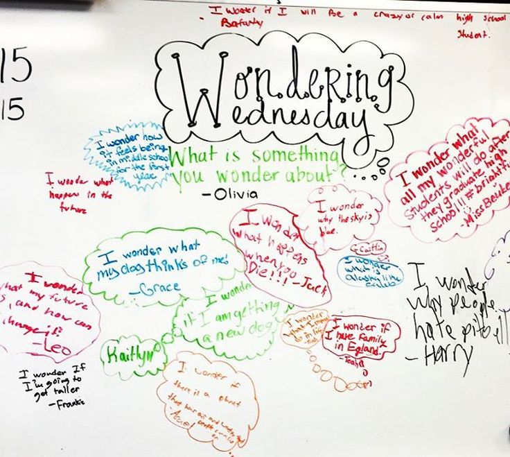 Student led white board ideas... loved this one #wonderwednesday #iwonderthattoo…