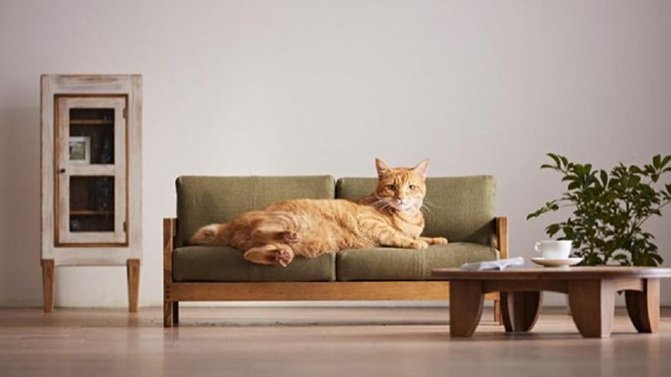 """craftsman made"" furniture for cats by Japan's Okawa Kagu"