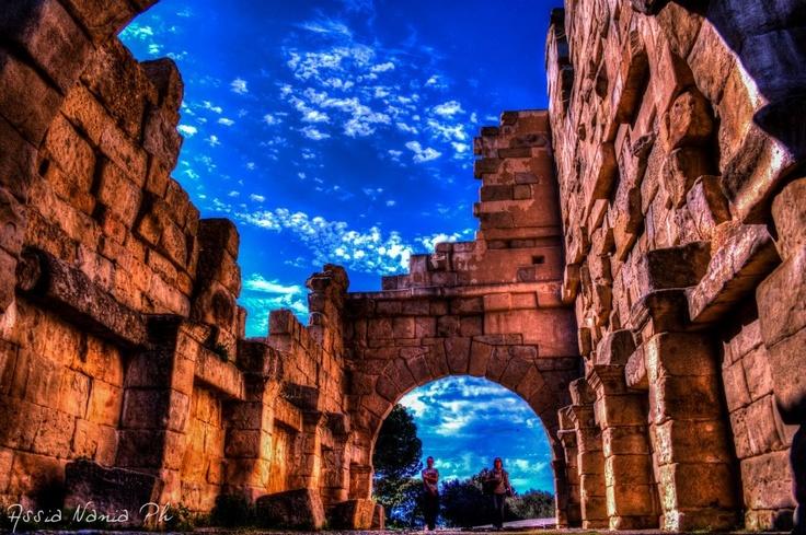 Area Archeologica di Tindari - La Basilica - Asia Nania Photo