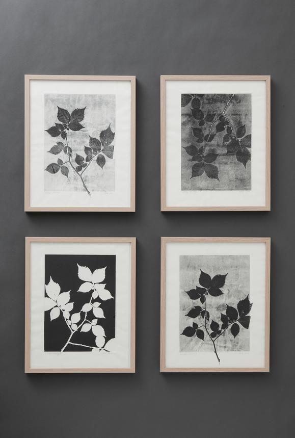 Botanical Prints By Pernille Folcarelli
