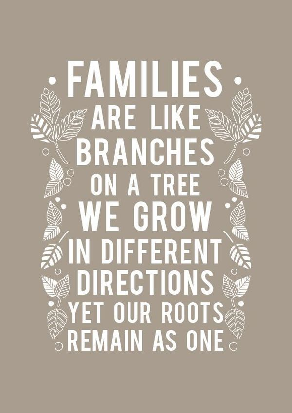 Important Family Time Quotes 4 Photo Book Quotes Family Quotes Cousin Quotes