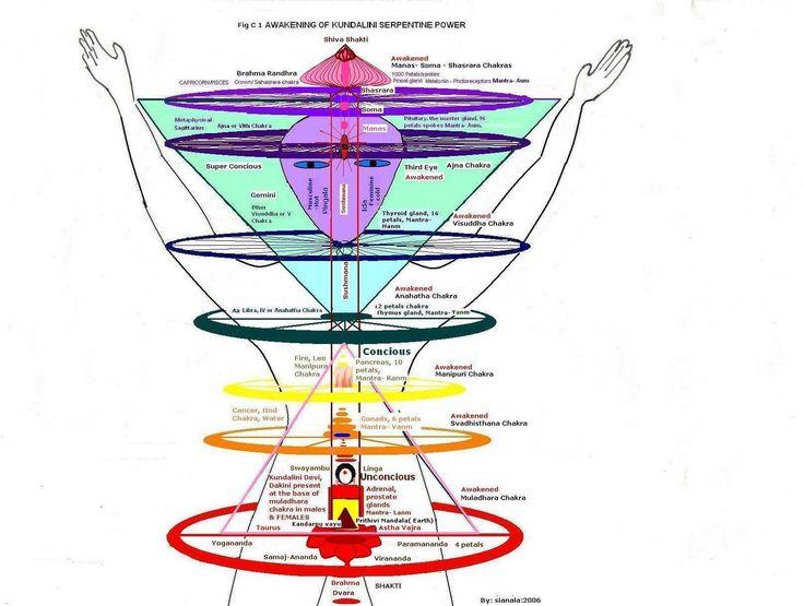 117 best    Chakras    images on Pinterest   Spiritual