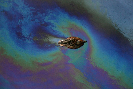 Angara river oil spill