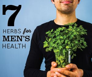 While many news outlets are eager to spread the news about a recent nutritional finding & how it can benefit women's health, many don't realize that the research can often be applied to certain aspects of the male department. When it comes to herbs for men's health, we're often looking for how certain plant materials can support prostate health and sex drive. Here are seven of the most potent, thoroughly-researched herbs and how it can support men's health. By Contributing Writer Dr. Edward…