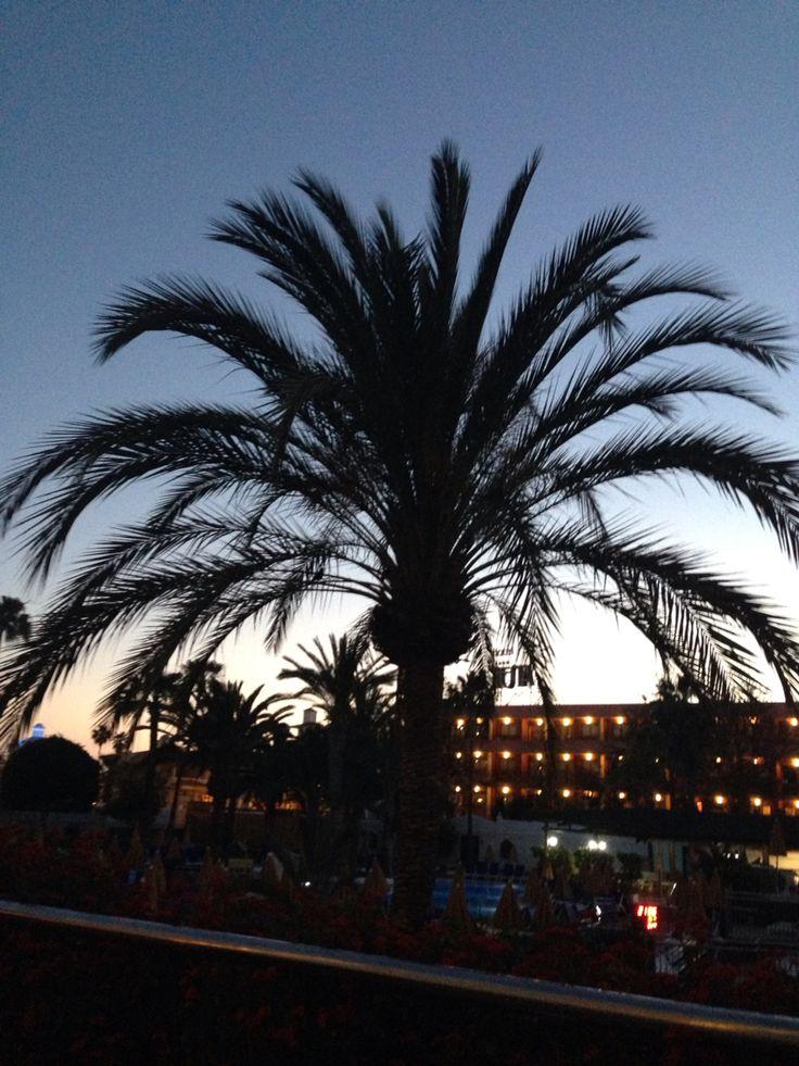 Tenerife. #Bitacora