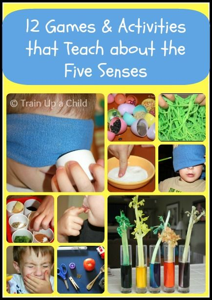 Train Up a Child: 12 Games and Activities to Teach Children about the Five Senses  repinned by Charlotte's Clips http://pinterest.com/kindkids/sensual-science-charlotte-s-clips/